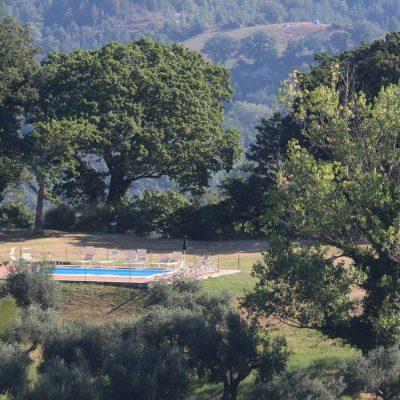 La piscina all'ombra di secolari alberi