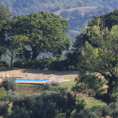 La piscina all'ombra di secolari alberi