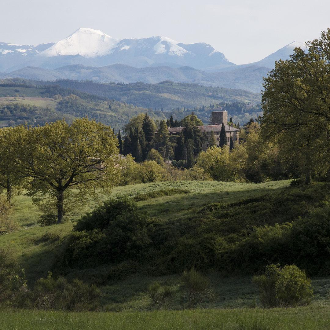 primavera_al_castello