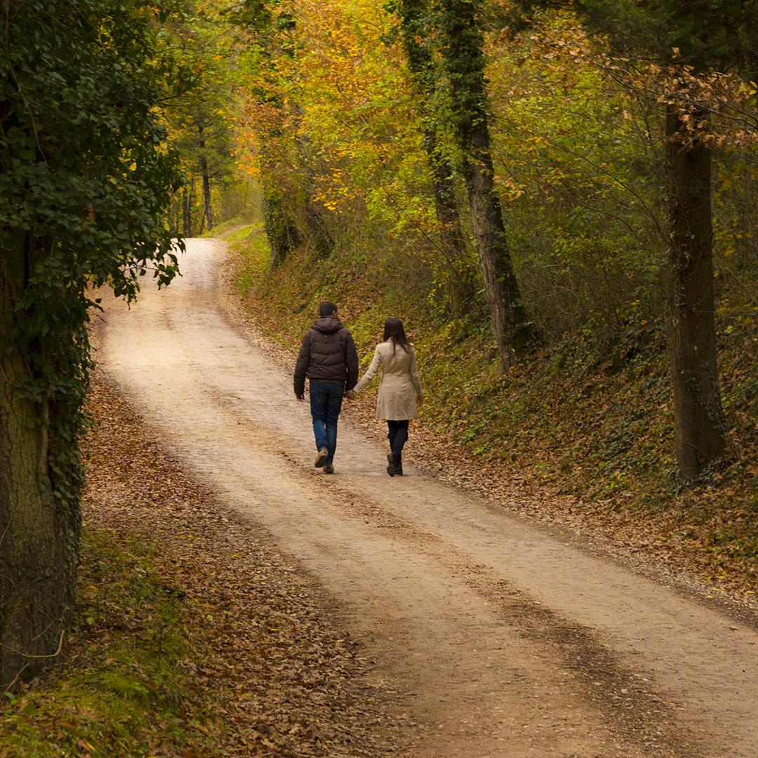 Camminare_in_autunno_a_petroia