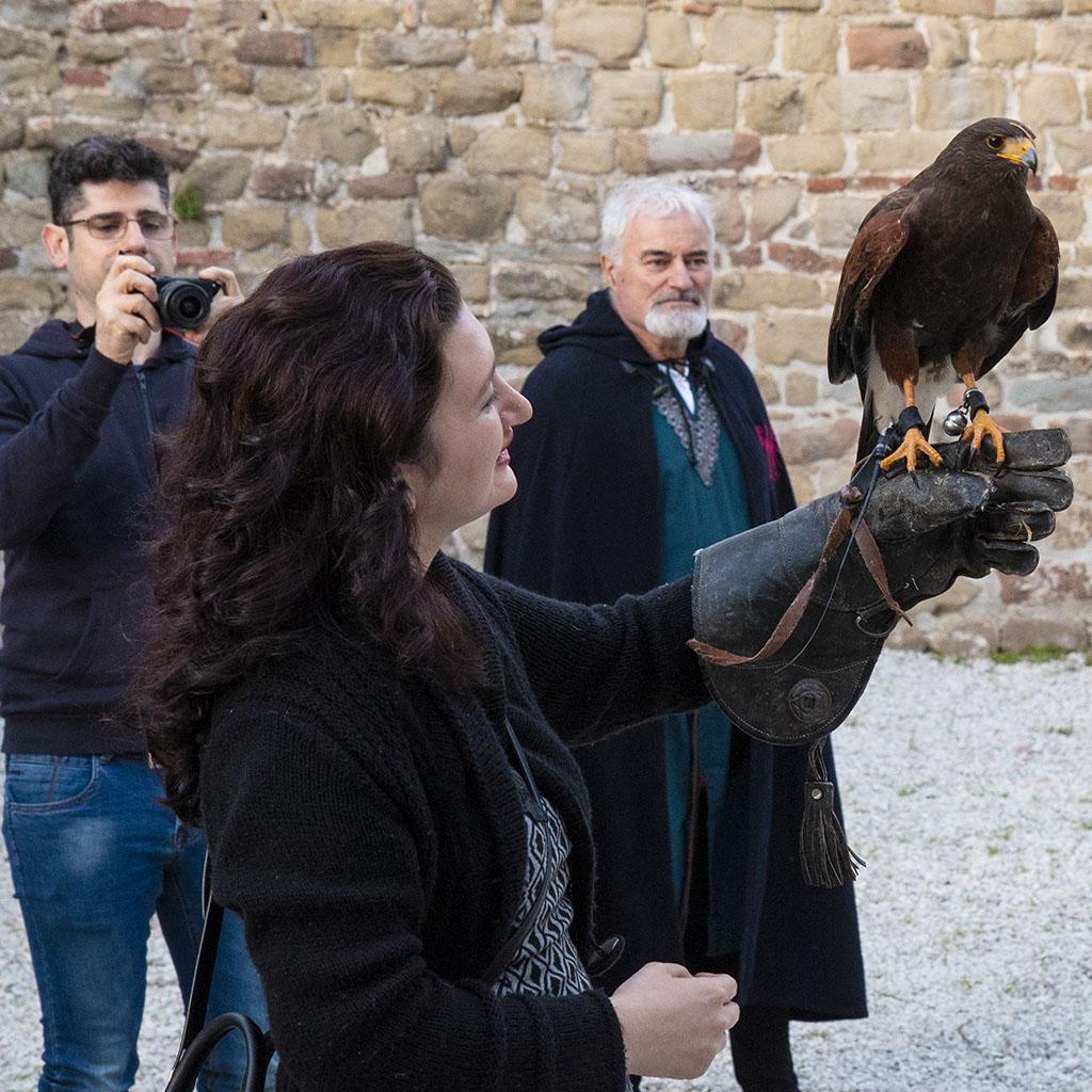 Falconeria a Gubbio